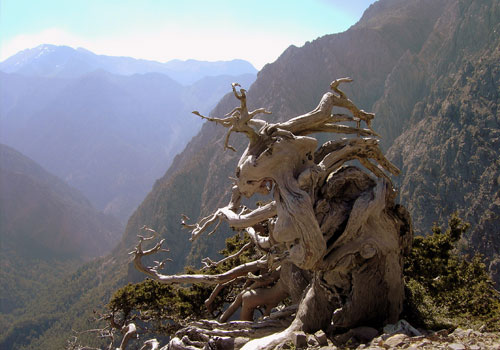 Crete walks: View from Ginglios to Samaria gorge